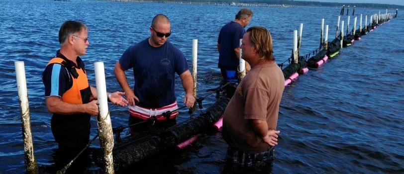 Seapa teach oyster farmers