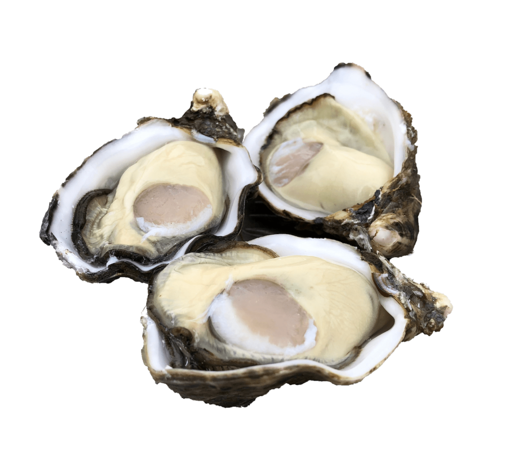 single seed oysters